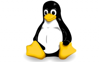 linux penguin logo