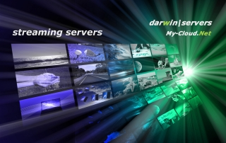 darwin, streaming server, to rent.