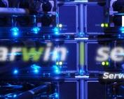 dedicated server rental,DARWIN Beagle SS (Super sport).