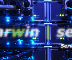 dedicated server rental,DARWIN Beagle SS (Super sport).